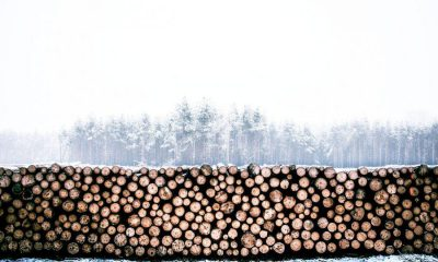 Bitcoin [BTC] mining inordinately energy intensive in a time of global warming