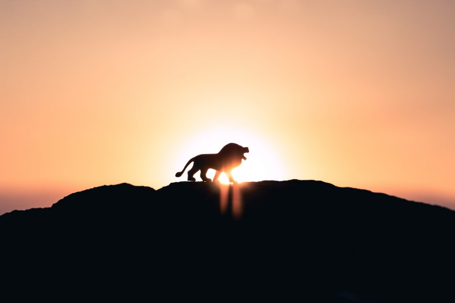 Monero [XMR/USD] Technical Analysis: Bull will continue to rule the market