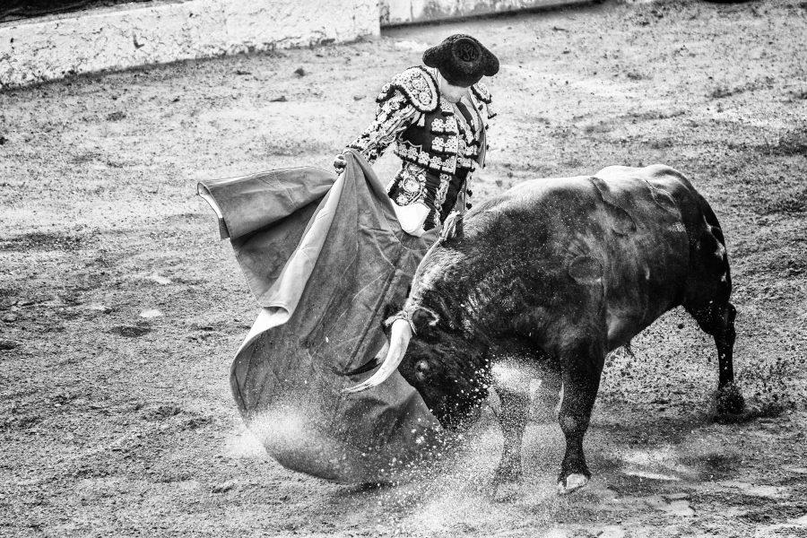 Ethereum [ETH/USD] Technical Analysis: Bulls are ready for an uphill run