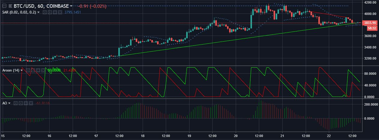 Bitcoin One Hour Price Chart Source Trading View