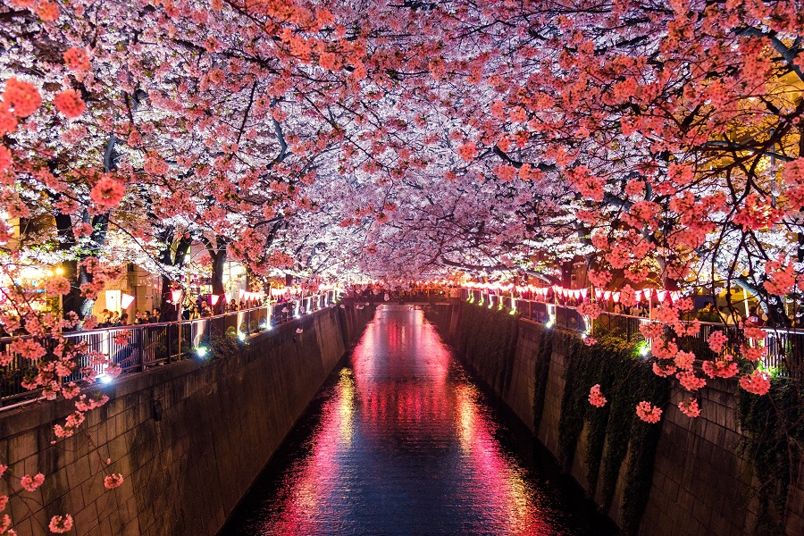 Bitcoin [BTC] Jesus says Japan comes first in global cryptocurrency adoption
