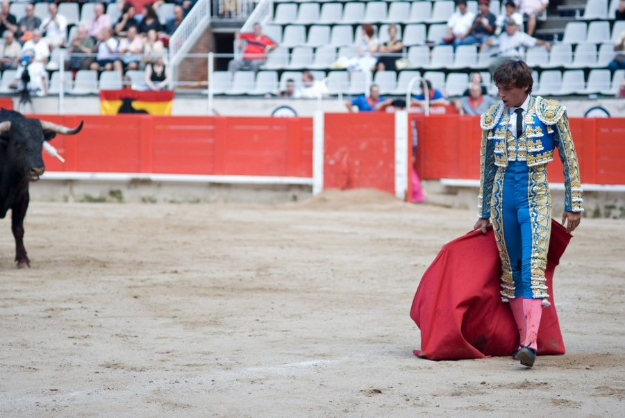 Tron [TRX/USD] Technical Analysis: Matador rides the bull