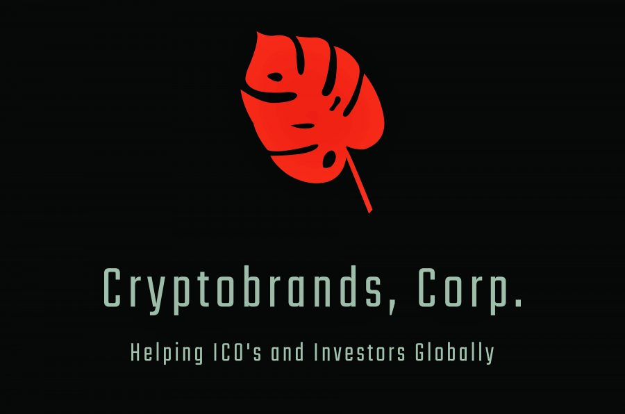 Crypto Startup with a business model that could walk along Amazon