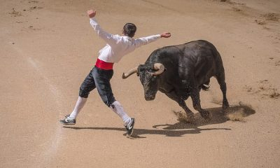 Bitcoin: What sparked the bull run?